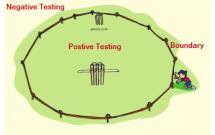 sharenhanh-negative-testing-la-gi-positive-la-gi