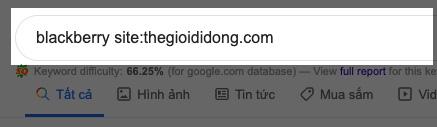 cách tra google hiệu quả