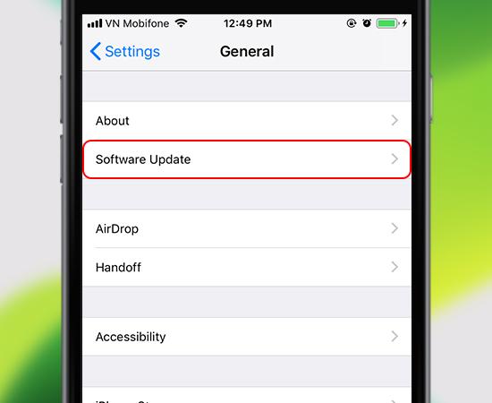 2. Vào Software Update (Cập nhật phần mềm)