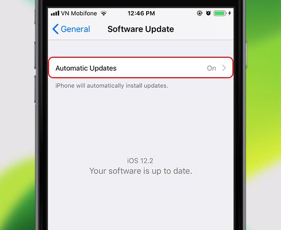 Automatic Updates (Tự động cập nhật)