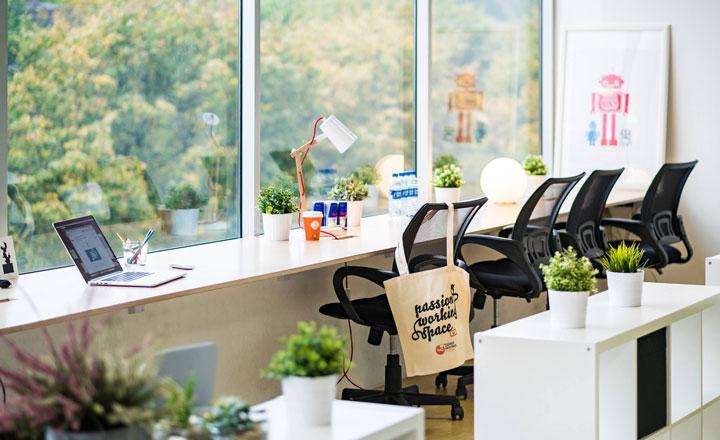Tạo môi trường xanh trong phòng làm việc